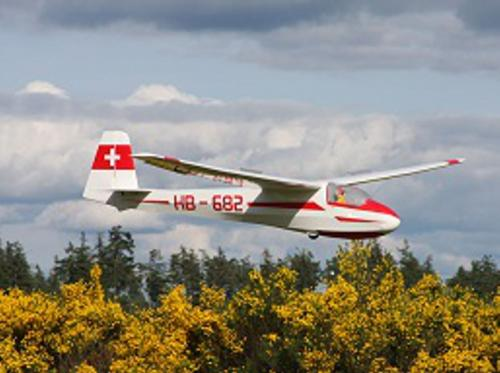 Mark's large scale glider