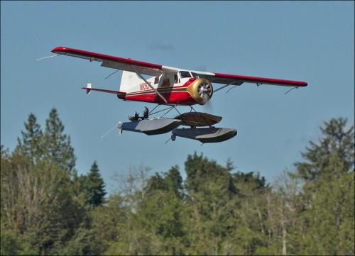Beaver Fly-by 2